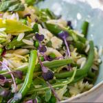 A bean and orzo salad with mirco herbs thumbnail